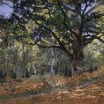 What species is Monet's Bodmer Oak?