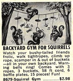 Vintage ad for Squirrel gym. Because these lazy squirrels need some extra training. - Fitness is life, fitness is BAE! <3 Tap the pin now to discover 3D Print Fitness Leggings from super hero leggings, gym leggings, fitness, leggings, and more that will make you scream YASS!!!
