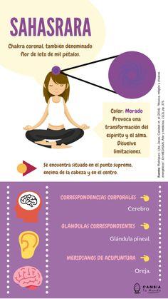 Yoga Kundalini, Yoga Meditation, Yoga Mantras, Reiki Chakra, Chakra Healing, 7 Chakras Meaning, Clara Berry, Yoga Illustration, Reiki Healer