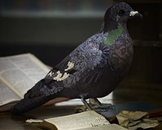 donyacoward-textile taxidermy-antique embroidery-Paul smith-artcommission