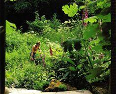 97 meilleures images du tableau gilles cl ment jardinier. Black Bedroom Furniture Sets. Home Design Ideas