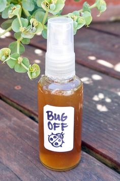 Bug Off! All-Natural Insect Repellent That Really Works