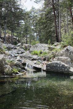 Piscine naturelle, Forêt de Tartagine. Haute Corse, France. baignade ici également !