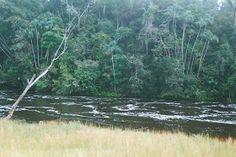 EL AGUA INUNDA LA TIERRA DEL VAUPÉS Y ABUNDA EN ESTA TIERRA DE INDÍGENAS: Aguas que serpean el Vaupés