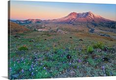 Canvas Gallery Wrap Mt St Helens Volcano Sunset Mountains Washington Pacific Northwest Pink Blue Purple Oversized Print Large Wall Art