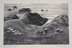 Hilary Paynter, wood engraving