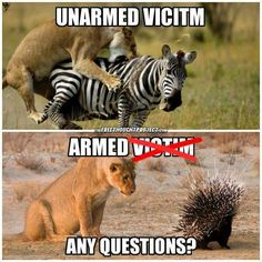 Surely if they can't understand this image, they will never understand this situation or at least until the same moment the zebra did.