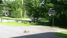 Gif:Skateboard + BMX bike + Basketball = Trick Shot, direct link: http://www.likecool.com/Gear/Pic/Gif%20Skateboard%20%20BMX%20bike%20%20Basketball%20%20Trick/Gif-Skateboard--BMX-bike--Basketball--Trick.gif