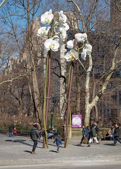 rising above visitors entering central park from its southeast corner are isa genzken's 'two orchids', presented by the public art fund.