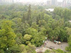 Vista de los bosques de Chapultepec