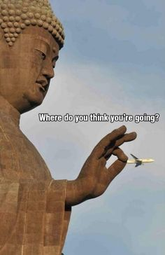 Get Back Here Mr Aeroplane