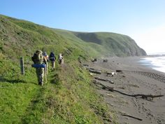Lost Coast Trail: The Insider's Hiking Guide | Venuelust