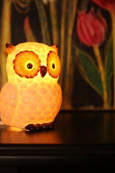 Owl Lamp oh my goshh iz sooo cutes! Owl Lamp, Beautiful Owl, Beautiful Images, Fancy Houses, Owl Crafts, Wise Owl, Spirit Animal, Night Light, Decoration