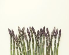 Dubbed the Usain Bolt of the vegetable world #british #asparagus can grow up to 10cm in one day!