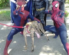 Daisy with the Super Heros