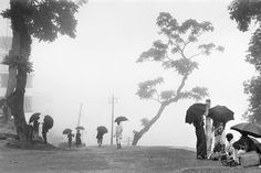Marc Riboud. India, 1956. Set against the Himalayas, Darjeeling is often cloaked in mist and drizzle, both of which are excellent for growing its famous tea.