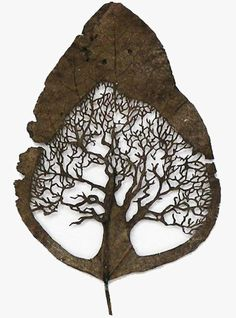 Lorenzo Duran...beautiful art carved into an ordinary leaf....