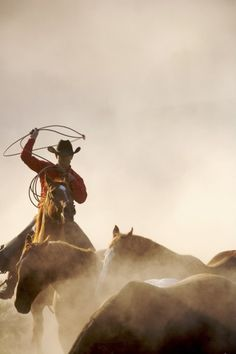 """Every now and again when we ask a Contributor to describe a photo you truly get a chance to step inside it,to be encompassed by the sounds, smell, temperature and visual display. That is exactly what photographer Jeanne Provost did when we asked her to describe her thrilling and vivid 'Cowboys and Horses' series. """"Theseare […]"""