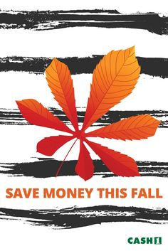 Here's a list of ways to save money in the fall. Some tips may be too late for you to take advantage of this year, but it's never too early to plan on saving.