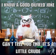 Chemistry Cat Electrons are in fact negative not positive.>>>which is why, having lost one, Chemistry Cat is now positive. Chemistry Cat, Chemistry Pick Up Lines, Science Cat, Science Puns, Funny Science Jokes, Physics Jokes, Quotes On Science, Funny Nerd Jokes, Science Comics