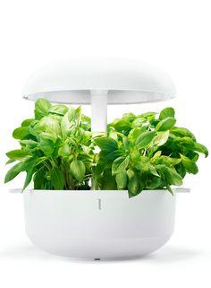Smart Gardens - plantui.com