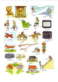 Latin Quotes, Latin Phrases, Latin Grammar, Speaking Latin, Teaching Latin, Latin Language, World Languages, Parts Of Speech, English Words