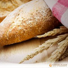 #YeastFacts If you are using yeast for making bread you need to be careful about the amount of flour, salt and water you are adding.
