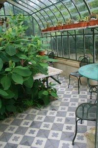 Jardin D'Agapanthe