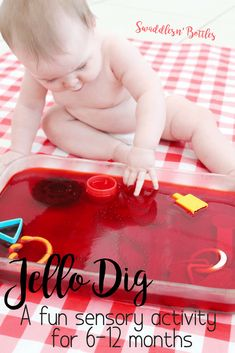 Jello Dig- a fun sensory activity for babies A great list of senosry activites for babies, 6 months to 12 months. Edible sensory activities included, such as our famous baby sand. Baby Sensory Play, Sensory Activities Toddlers, Baby Play, Infant Activities, Sensory For Babies, Crafts For Babies, Baby Learning Activities, Edible Sensory Play, 10 Month Old Baby Activities