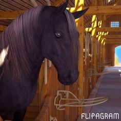 ATTENTION HORSE LOVERS: a new MMORPG game is coming this November! Everything you see in the video is FROM the game! :) go on FACEBOOK now and GET IT to10k likes! RIDING HIGH Play #flipagram Video - http://flipagram.com/f/XFEIU8Kr14