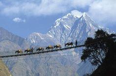 The swing bridge Nepal / www.wildcanadasal...#Repin By:Pinterest++ for iPad#