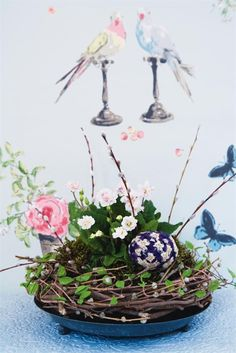 Beautiful! Make a nest like planter from grapevine wreath, wrap in ivy - love it!