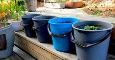 nesle og microferm Bokashi, Canning, Home Canning, Conservation