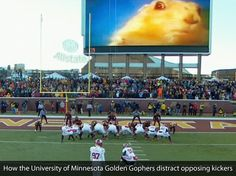 How the university of Minnesota distracts opposing kickers [context/via]