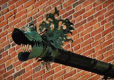 The gargoyles, Collegium Maius