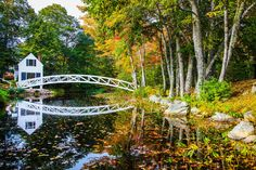 Essential Weekend Guide to Acadia National Park and Bar Harbor Maine » Carry-On Traveler Acadia National Park, National Parks, Bar Harbor Maine, Vivid Imagery, Lake Erie, Large Art, New Mexico, Garden Bridge, Home Art