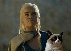 Grumpy Cat / Khalessi