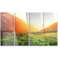 DesignArt 'Beautiful Meadow on Sunny Day' 4 Piece Photographic Print on Canvas Set