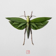 Raku Inoue (previously) continues his wild imagination of floral insect. After an extended road trip to several destinations in the American Southwest, Raku got Art Et Nature, Deco Nature, Nature Crafts, Bug Crafts, Art Floral, Floral Artwork, Seed Art, Colossal Art, Pressed Flower Art