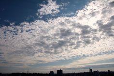 cloud like skin of fish.
