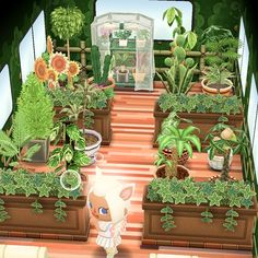 animal crossing aesthetic my camper was converted into a beautiful greenhouse :) : ACPocketCamp Animal Crossing 3ds, Animal Crossing Qr Codes Clothes, Animal Crossing Pocket Camp, Animal Games, My Animal, Cool Pictures, Beautiful Pictures, Ac New Leaf, Motifs Animal