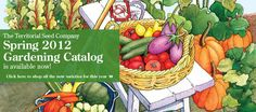 The Territorial Seed Company:  About the only place I've found grafted vegetable plants for sale. Grafted vegetables are the same as grafted trees: The rootstock is of one cultivar, the scion or top part of the plant is another. This helps to give the plant disease resistance and vigor. Interesting catalog, available online and in print.