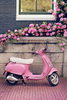 Europe Photography - Pink Scooter and Roses, Fine Art Travel Photograph, Nursery Art, Large Wall Art Europe Travel Photography Title: Pretty in Pink The cutest pink Vespa, parked just perfectly under Pretty In Pink, Pink Love, Cute Pink, Pretty Roses, Vespa Rose, Pink Vespa, Tout Rose, Everything Pink, Pink Walls