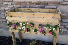 Készíts ilyen fantasztikus virágosládát pillanatok alatt! Mutatjuk a lépéseket!