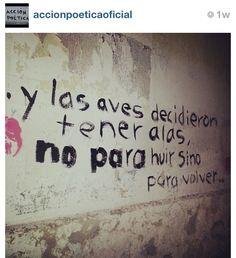 Accion poetica  #repost #instagram