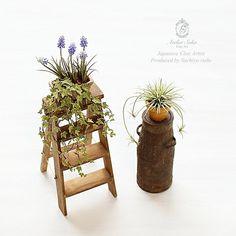 2017.12 Miniature Plants Dollhouse ♡ ♡ By atelier soka