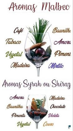 Wine Drinks, Alcoholic Drinks, Wine Flavors, Wine Guide, Wine Art, Wine Cheese, Wine And Beer, Red Wine, Food And Drink