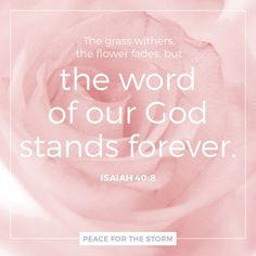 The grass withers, the flower fades, but the word of our God stands forever. Isaiah 40:8 (NKJV)