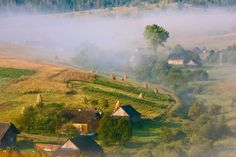 Summer Morning in the Carpathians