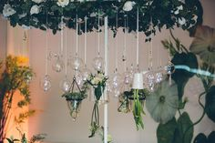A bohemian Jewish wedding bringing the outdoors inside at Lourensford Wine Estate, Cape Town, South Africa - Smashing the Glass Boho Wedding Gown, Wedding Blog, Wedding Venues, Jewish Weddings, Real Weddings, Cape Town South Africa, Chuppah, African, Wine
